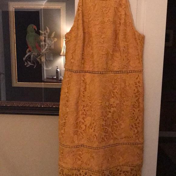 d664a4400ae Beautiful Mustard Yellow Dress. NWT. ANTONIO MELANI
